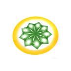 صحن غضار , اخضر , ميلامين , 50م